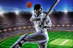 Simple and Perfect Guide to Understanding Online Cricket Betting Odds